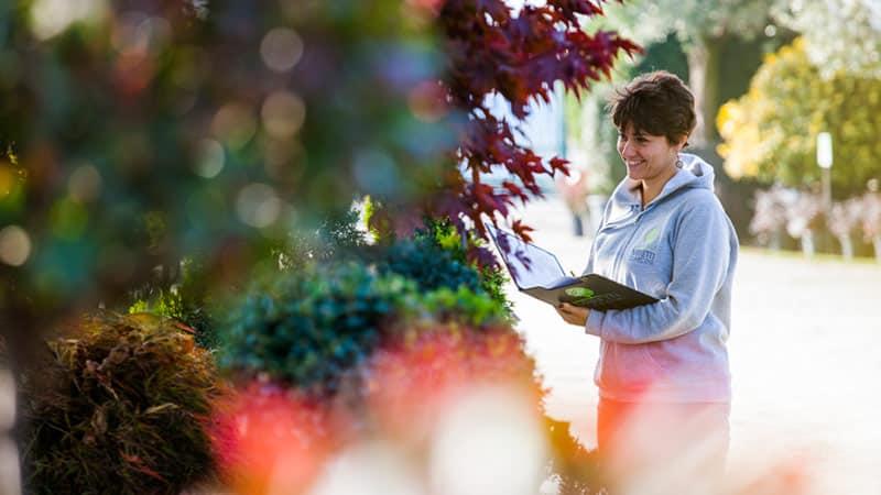 Miretti vivai e ideazione e progettazione giardini for Manuale progettazione giardini